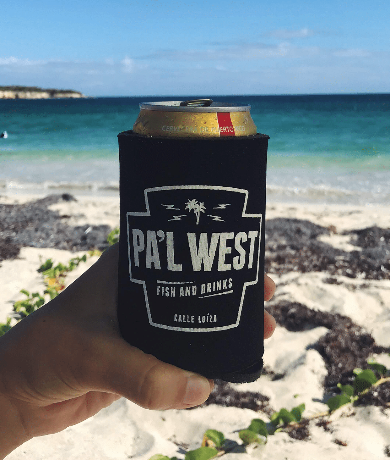 Craft & Local Beers